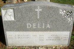 Anna Delia
