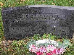 Alvin J Salava