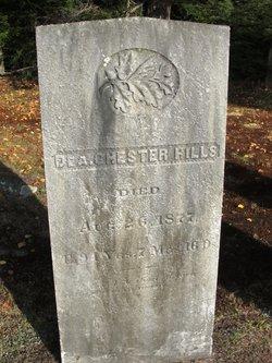 Chester Webster Hills