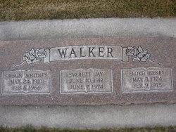 Floyd Henry Walker