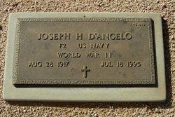 Joseph H D'Angelo