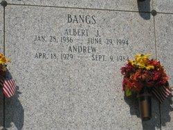Andrew Bangs