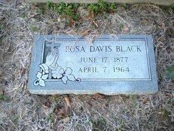 Rosa <I>Davis</I> Black