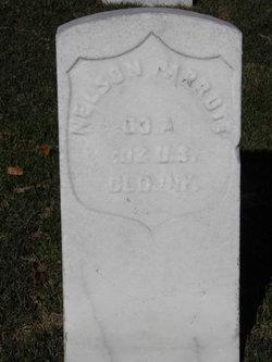 Mollie Parrott