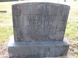 George W. Horton