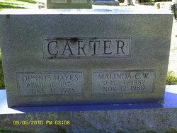 Malinda C.W. Carter