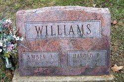 Amber J. <I>Conrad</I> Williams