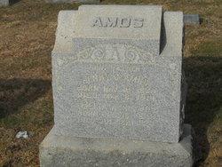 Amelia Ann <I>McComas</I> Amos