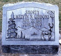 Melvin Nathan Gibbons