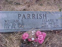 William Thomas Parrish