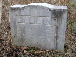 Jennie <I>Poteet</I> Gilliland