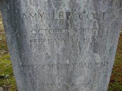 Amy Lee Colt