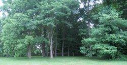 Barnett Graveyard