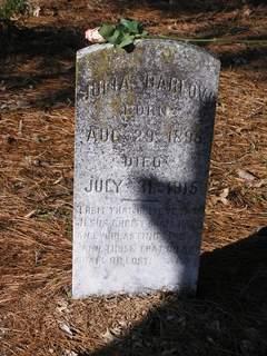 Julia Barlow