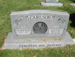 Irvin James Carlson