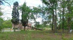 Thunderpond Family Cemetery
