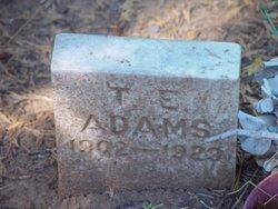 T E Adams