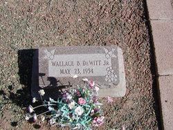 Wallace Barnett DeWitt, Jr