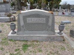 Andrew J Williams