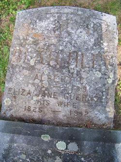 Eliza Jane <I>Guernsey</I> Blatchley