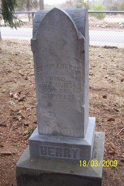 Edwin A. Berry