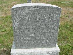 Mary J. <I>Searlds</I> Wilkinson