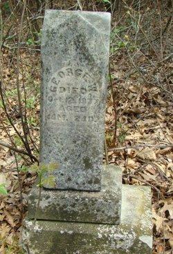 George W. Hultz