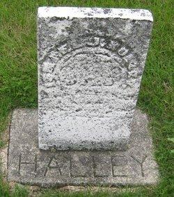 Israel J Halley