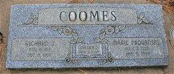 Richard J Coomes