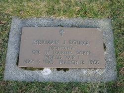Herman J Bouma