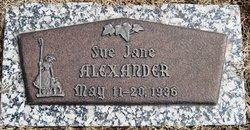Sue Jane Alexander