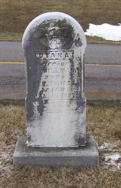 Diana Millman