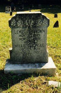Lewis P Brown