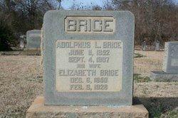 Adolphus L. Brice