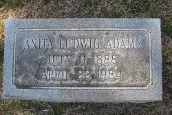 Anita <I>Ludwig</I> Adams