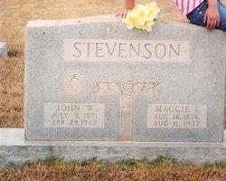 John William Walker Stevenson