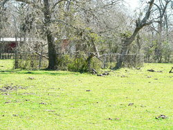 Downman Cemetery