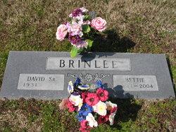 Bettie May <I>Kennedy</I> Brinlee