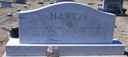 Marilyn <I>Perkins</I> Harris