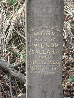 Mary Ann <I>Wells</I> Ballard