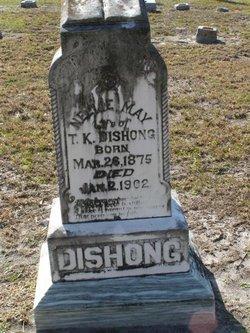 Nellie May <I>Harris</I> Dishong