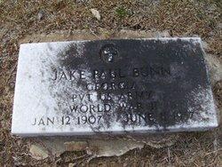 Jake Paul Bunn