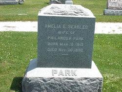 "Ameliaette E. ""Amelia"" <I>Searles</I> Park"