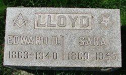 Sara Lloyd
