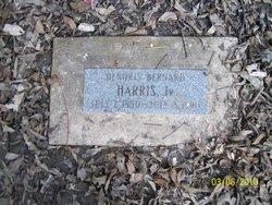Denoris Bernard Harris, Jr