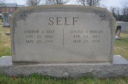 Louisa Anner <I>Wright</I> Self