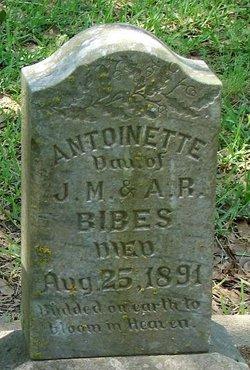Antoinette Bibes