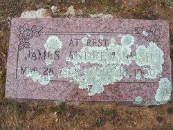 James Andrew Bush