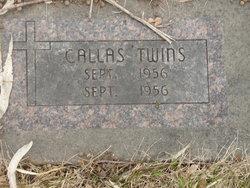 William Gus Callas