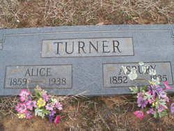 Alice Turner